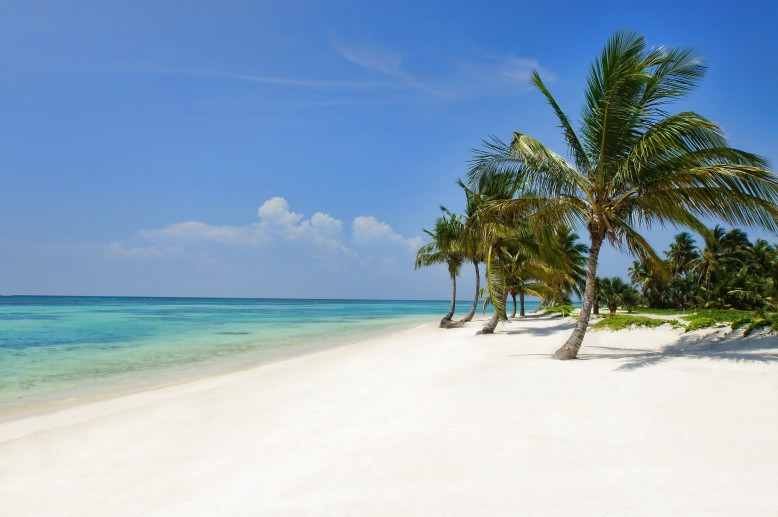 wes3805gr-143545-Puntacana Beach