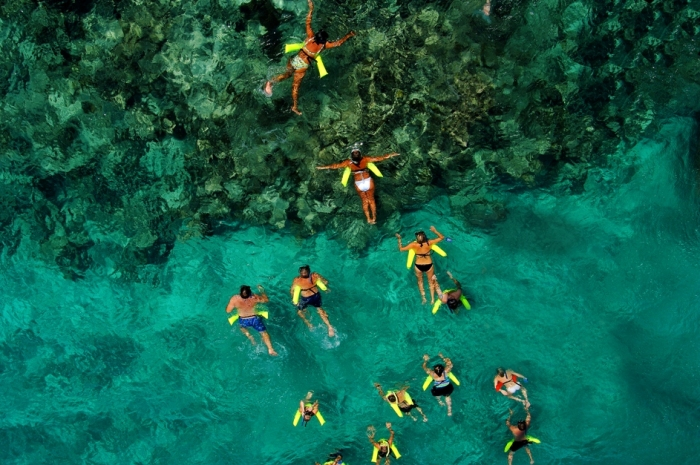 Reef Explorer 7