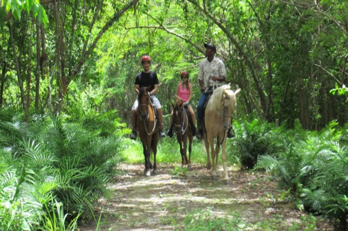 Scape Park Horseback Riding