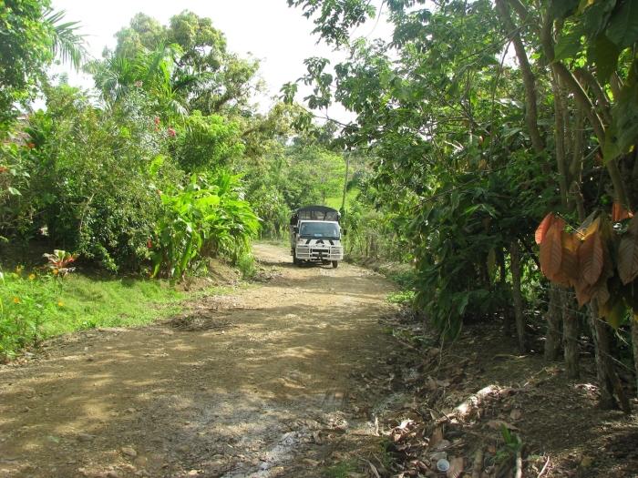 Caribbean VIP safari punta cana