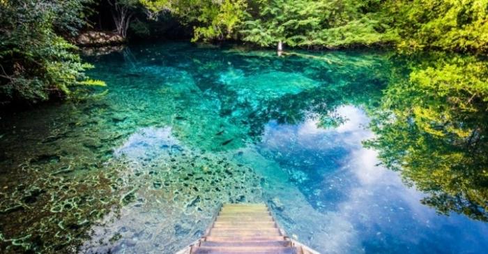 Ecologica Reserve Punta Cana
